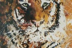 Tiger-Bright